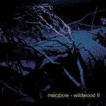 wildwood II front